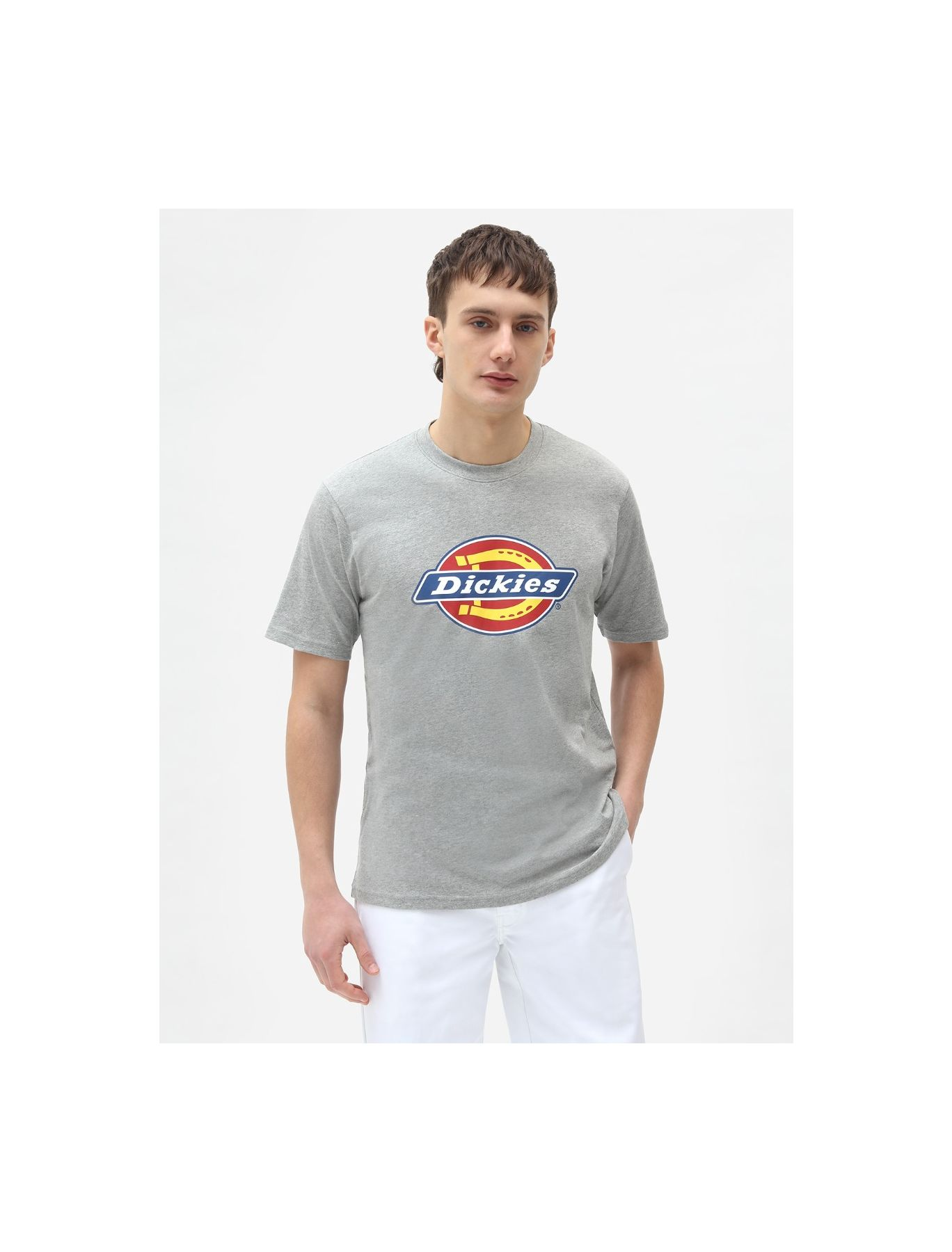 Dickies  LOGO TEE  ICON L1