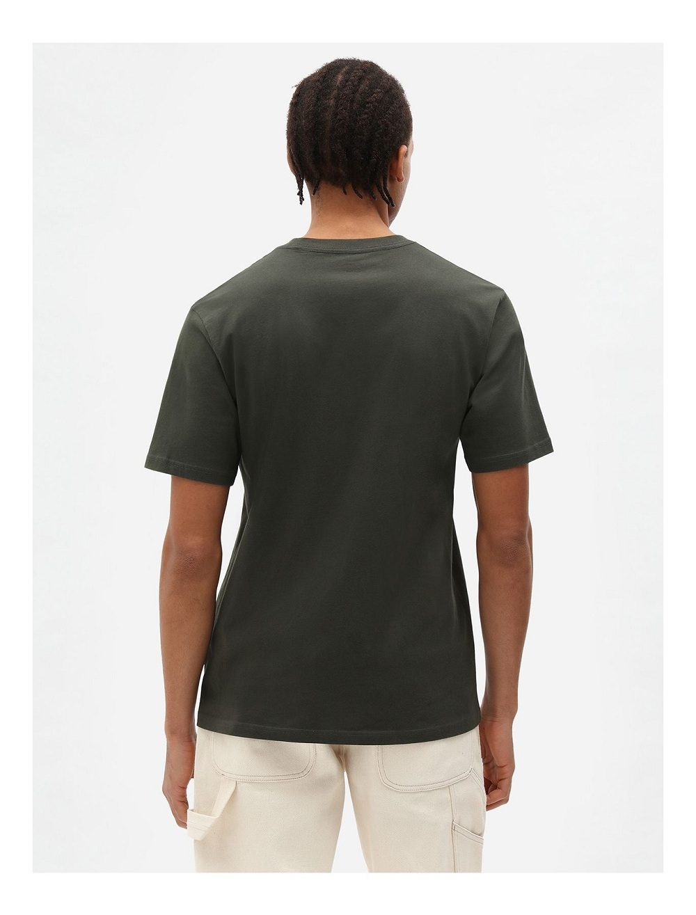 Dickies  T-Shirt    MAPLETON 3